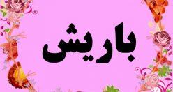 معنی اسم باریش – نام باریش -اسم های زیبای ترکی دخترانه