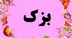 معنی اسم بزک – نام بزک – زیباترین اسم های دخترانه ترکی