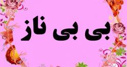 معنی اسم بی بی ناز – نام بی بی ناز – زیباترین اسم های دخترانه ترکی