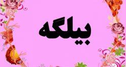 معنی اسم بیلگه – نام بیلگه – زیباترین اسم های دخترانه ترکی