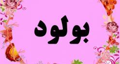 معنی اسم بولود – نام بولود – زیباترین اسم های دخترانه ترکی