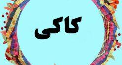 معنی اسم کاکی – نام کاکی – زیبا ترین نام های پسرانه مازندرانی