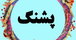 معنی اسم پشنگ – نام پشنگ – زیبا ترین نام های پسرانه گیلکی