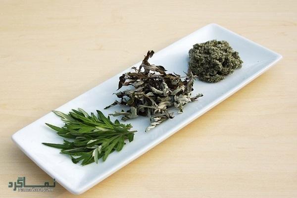 خواص درمانی گیاه زنگی دارو برای سلامتی | مضرات آن