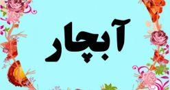 معنی اسم آبچار – معنی آبچار – اسم پسرانه ترکی
