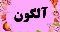 معنی اسم آلگون – نام آلگون – زیباترین اسم های دخترانه ترکی