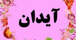 معنی اسم آیدان – نام آیدان – زیباترین اسم های دخترانه ترکی