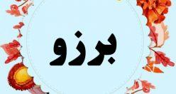 معنی اسم برزو – نام برزو – اسمهای کردی پسرانه