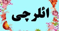 معنی اسم ائلرچی  – معنی ائلرچی – اسم پسرانه ترکی