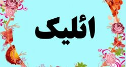 معنی اسم ائلیک – معنی ائلیک – اسم پسرانه ترکی