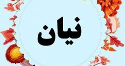 معنی اسم نیان – نام نیان – اسمهای کردی پسرانه
