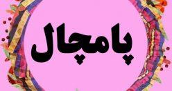 معنی اسم پامچال – نام پامچال – زیبا ترین نام های دخترانه گیلکی