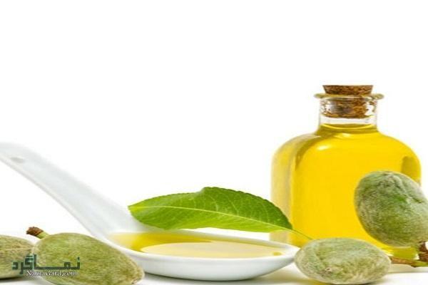 سقز چیست ؟ | خواص درمانی گیاه سقز برای سلامتی