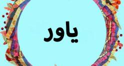 معنی اسم یاور – نام یاور – زیبا ترین نام های پسرانه گیلکی