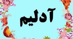 معنی اسم آدلیم – معنی آدلیم – نام زیبای پسرانه ترکی