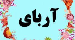 معنی اسم آربای – معنی آربای – نام پسرانه ترکی