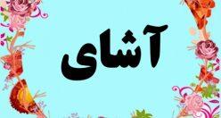 معنی اسم آشای – معنی آشای – نام پسرانه ترکی