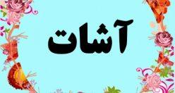معنی اسم آشات  – معنی آشات – نام پسرانه ترکی