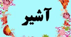 معنی اسم آشیر – معنی آشیر – نام پسرانه ترکی