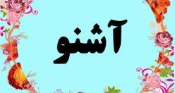 معنی اسم آشنو – معنی آشنو – نام پسرانه ترکی