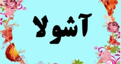 معنی اسم آشولا – معنی آشولا – نام پسرانه ترکی
