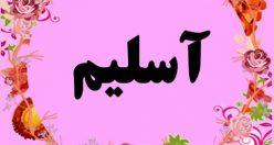 معنی اسم آسلیم – نام آسلیم – زیباترین اسم های دخترانه ترکی