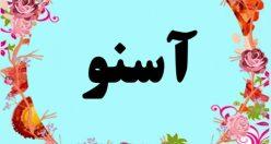معنی اسم آسنو – معنی آسنو – نام پسرانه ترکی
