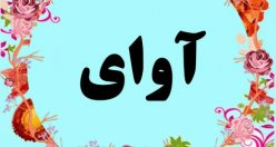 معنی اسم آوای – معنی آوای – نام پسرانه ترکی