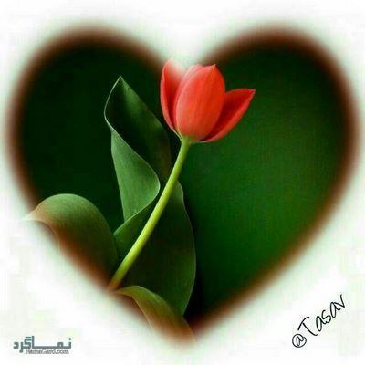 عکس پروفایل قلب جذاب