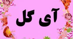 معنی اسم آی گل – نام آیگل- اسم های ترکی زیبا با معنی