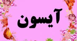 معنی اسم آیسون – نام آیسُوَن – زیباترین اسم های دخترانه ترکی