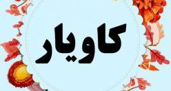 معنی اسم کاویار – نام کاویار – اسمهای کردی پسرانه