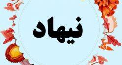 معنی اسم نیهاد – نام نیهاد – اسمهای کردی پسرانه