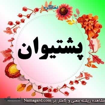 معنی اسم پشتیوان - نام پشتیوان - اسمهای پسرانه کردی