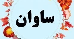 معنی اسم ساوان – نام ساوان – اسمهای کردی پسرانه