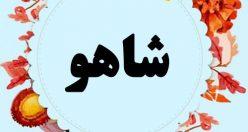 معنی اسم شاهو – نام شاهو – اسمهای کردی پسرانه