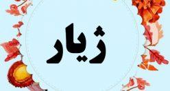 معنی اسم ژیار – نام ژیار – اسمهای کردی پسرانه