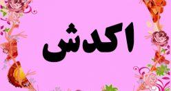 معنی اسم اکدش – نام أکدش – زیباترین نام های دخترانه ترکی