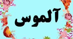 معنی اسم آلموس – معنی آلموس – نام پسرانه ترکی