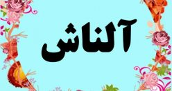 معنی اسم آلناش – معنی آلناش – نام پسرانه ترکی