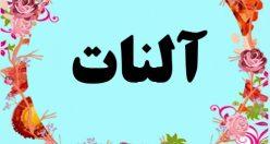 معنی اسم آلنات – معنی آلنات – نام پسرانه ترکی