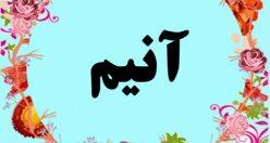 معنی اسم آنیم – معنی آنیم – نام پسرانه ترکی