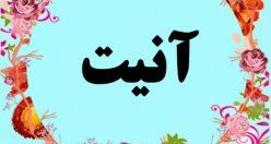 معنی اسم آنیت – معنی آنیت – نام پسرانه ترکی