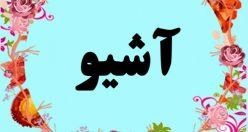 معنی اسم آشیو – معنی آشیو – نام پسرانه ترکی