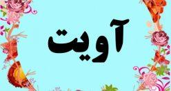 معنی اسم آویت – معنی آویت – نام پسرانه ترکی