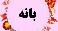 معنی اسم بانه – نام بانه – اسمهای کردی دخترانه