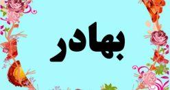معنی اسم بهادر – معنی بهادر –  نام پسرانه ترکی