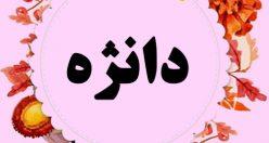 معنی اسم دانژه – نام دانژه – اسمهای کردی دخترانه