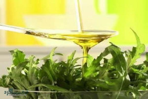خواص درمانی گیاه منداب | روش مصرف آن