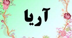 معنی اسم اریا – معنی آریا – نام پسرانه فارسی